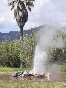 Calistoga's Old Faithful geyser